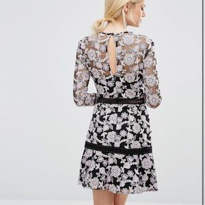 True Decadence Allover Floral Lace Skater Dress 8